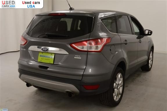 for sale 2013 passenger car ford escape sel buffalo insurance rate quote price 17755 used cars. Black Bedroom Furniture Sets. Home Design Ideas